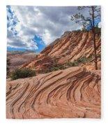 Rippled Rock At Zion National Park Fleece Blanket