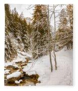 River And Path Fleece Blanket