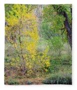 Riverbank Colors Fleece Blanket