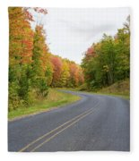 Road Passing Through A Forest, Alger Fleece Blanket