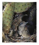 Roadrunners In Nest Fleece Blanket