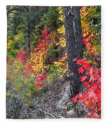 Roadside Fall Colors Fleece Blanket