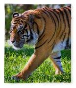 Roaming Tiger Fleece Blanket