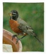 Robin 1 Fleece Blanket