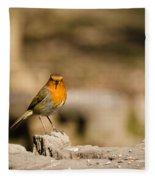 Robin At Feeder Fleece Blanket