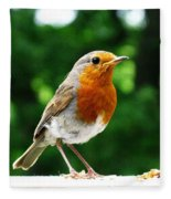 Robin Bird Photograph Fleece Blanket