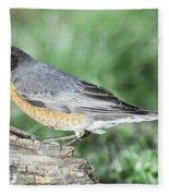 Robin Eating Mealworm Fleece Blanket