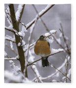 Robin In Snow Fleece Blanket