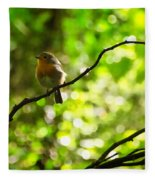 Robin In The Glade Fleece Blanket