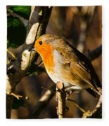 Robin In The Hedgerow Fleece Blanket