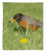 Robin Vs Worm Fleece Blanket