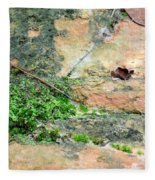 Rock Abstract 1 Fleece Blanket