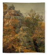 Rock Formation Fleece Blanket