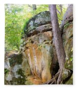 Rock Formation Wildcat Den State Park Fleece Blanket