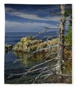 Rock Formations And Trees On The Shoreline In Acadia National Park Fleece Blanket