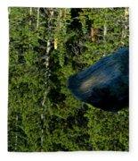 Rock Out Of Reflecting Lake Fleece Blanket
