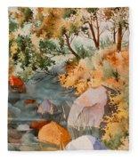 Rock Reflections Fleece Blanket