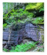 Rock Wall Trail Of The Cedars Glacier National Park Painted Fleece Blanket