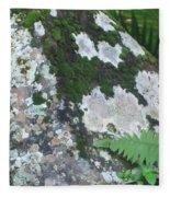 Rock With Moss Fleece Blanket