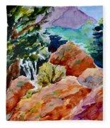 Rocks Near Red Feather Fleece Blanket