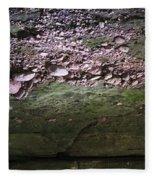 Rocks - Parfreys Glen - Wisconsin Fleece Blanket