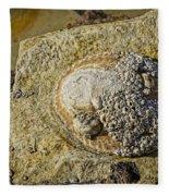 Rocky Cliff Fleece Blanket