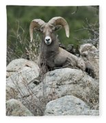 Rocky Mountain Big Horn Fleece Blanket
