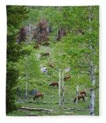 Rocky Mountain Elk Herd Fleece Blanket