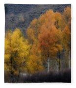 Rocky Mountain Fall Fleece Blanket
