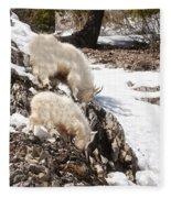 Rocky Mountain Goats - Mother And Baby Fleece Blanket