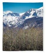 Rocky Mountain Woodland Fleece Blanket