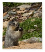Rodent In The Rockies Fleece Blanket