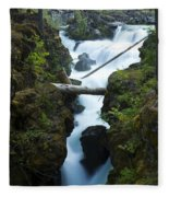 Rogue River Falls 1 Fleece Blanket