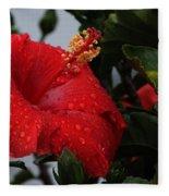 Romance In The Rain Fleece Blanket