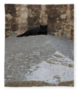 Rome Cat Fleece Blanket