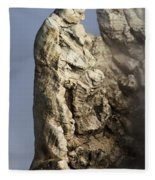 Roosevelt Geyser Fleece Blanket