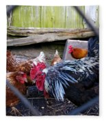 Rooster And Chickens Fleece Blanket