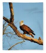 Roosting Tree 1 Fleece Blanket