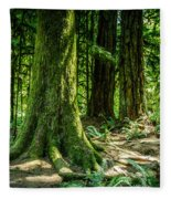 Root Feet Collection 3 Fleece Blanket
