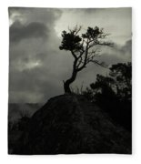 Rooted In Stone Fleece Blanket