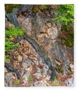 Roots And Rocks Fleece Blanket