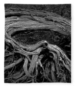 Roots Of A Fallen Tree By Wawa Ontario In Black And White Fleece Blanket