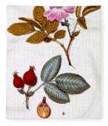 Rosa Villosa Fleece Blanket