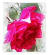 Rose - 4505-004 Fleece Blanket