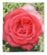 Rose At Clark Gardens Fleece Blanket