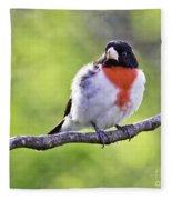 Rose-breasted Grosbeak Fleece Blanket