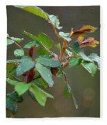 Rose Bush Rain Fleece Blanket