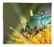 Rose Chafer Fleece Blanket