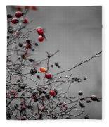 Rose Hip Red Fleece Blanket