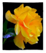 Rose Of Cleopatra Fleece Blanket